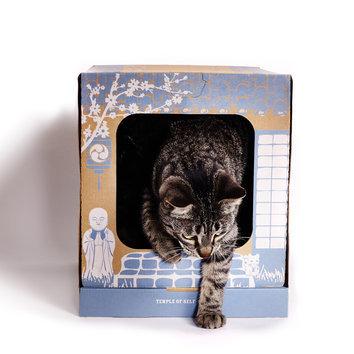 maison de toilette jetable pour chat avec liti re poopy cat. Black Bedroom Furniture Sets. Home Design Ideas