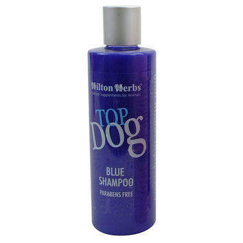 Shampooing rehausseur TOP DOG BLUE