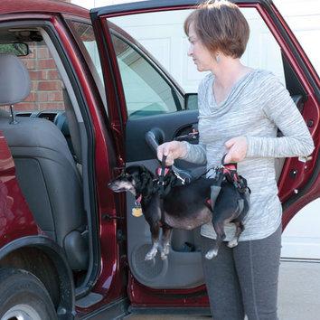 Modes de transport pour petits / vieux chiens qui fatiguent vite - Page 8 Harnais-de-levage-avant-et-arriere-pour-chien