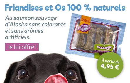 Friandises et os 100 % naturel au saumon sauvage pour chien