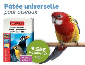 Pâtée naturelle universelle pour tous les oiseaux