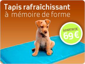tapis rafraîchissant à mémoire de forme pour chien