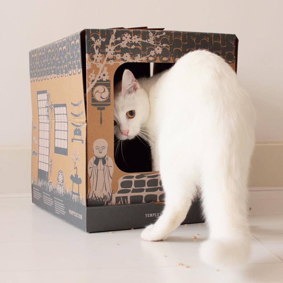 La maison de toilette jetable pour chat Poopy Cat