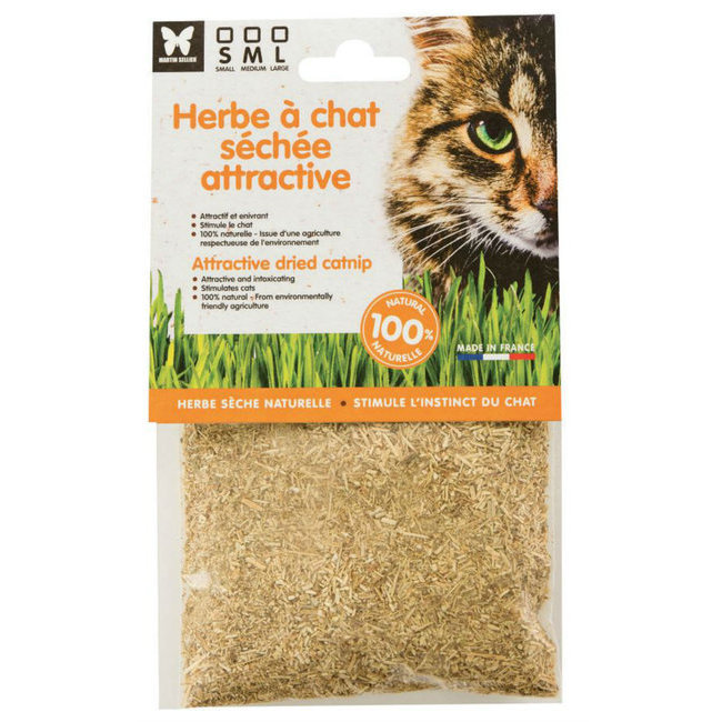 Alimentation du chat friandises snacks herbe chat herbe chat naturelle s ch e - Herbe a chat ...