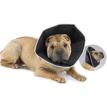 couchage accessoires et toilettage brosse cuelle collerette collerette souple pour chien. Black Bedroom Furniture Sets. Home Design Ideas